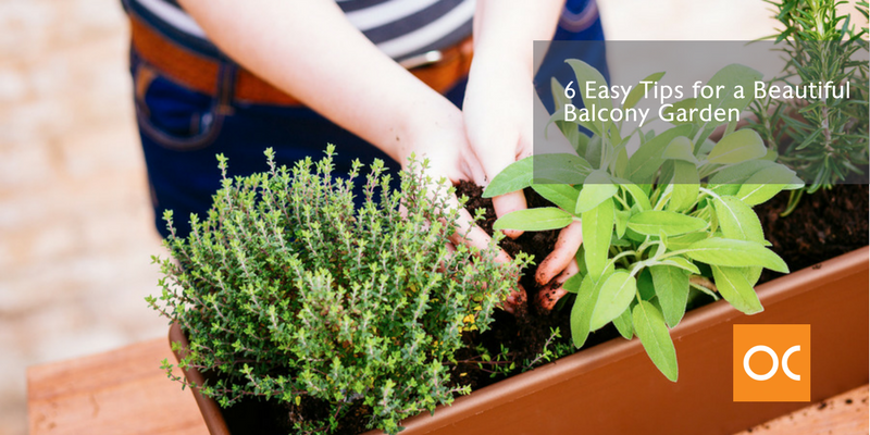 6 Easy tips for a beautiful balcony garden