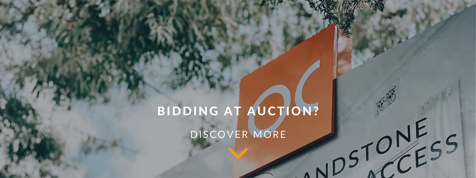 Auction bidders header image web