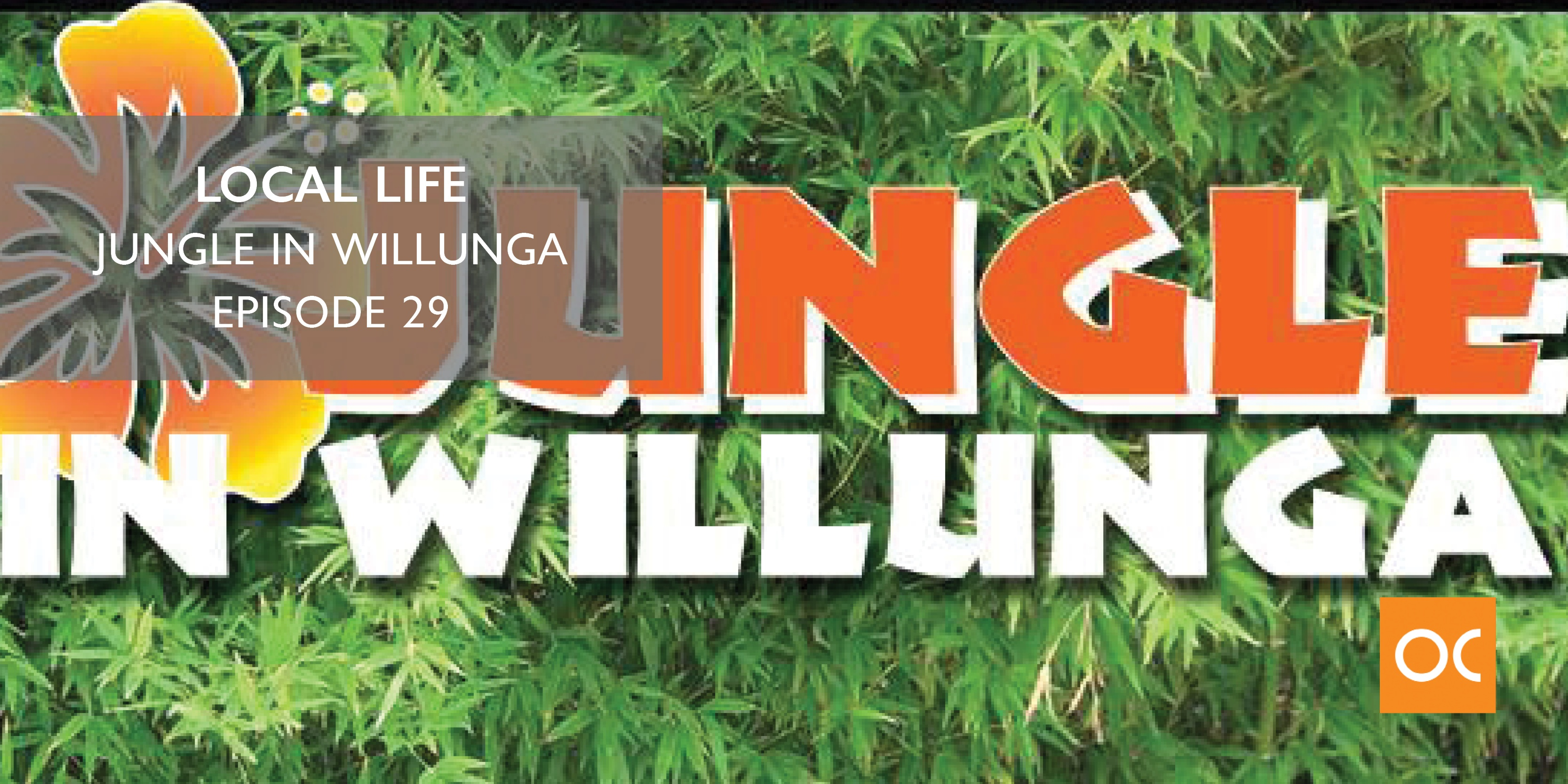 Local Life - Blog feature image Jungle in Willunga Ep 29
